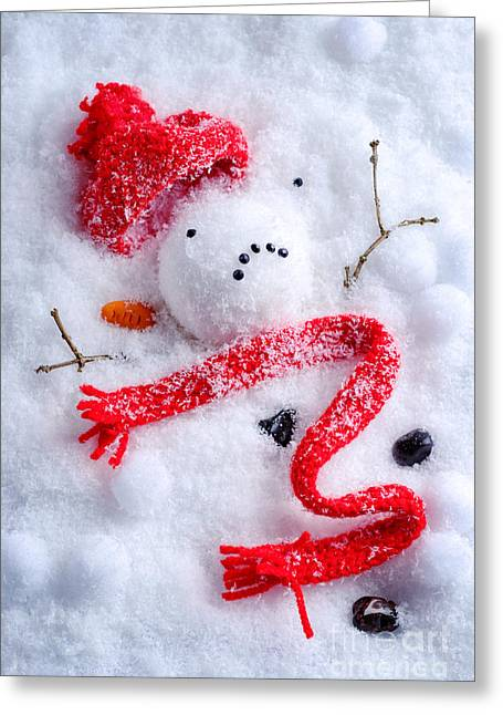 Black Scarf Greeting Cards - Melted Snowman Greeting Card by Amanda And Christopher Elwell