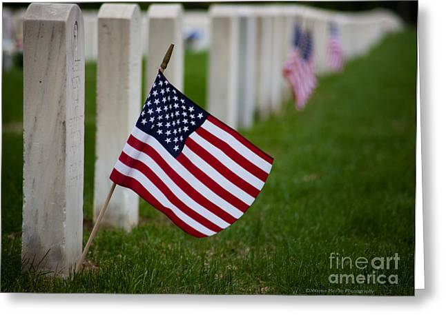 Bravery Greeting Cards - Memorial Day - Fort Snelling National Cemetery Greeting Card by Wayne Moran