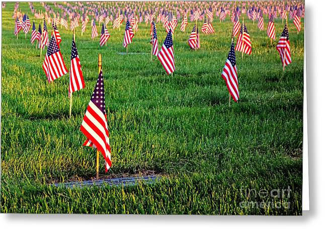 Dignity Greeting Cards - Memorial Day Greeting Card by Olivier Le Queinec