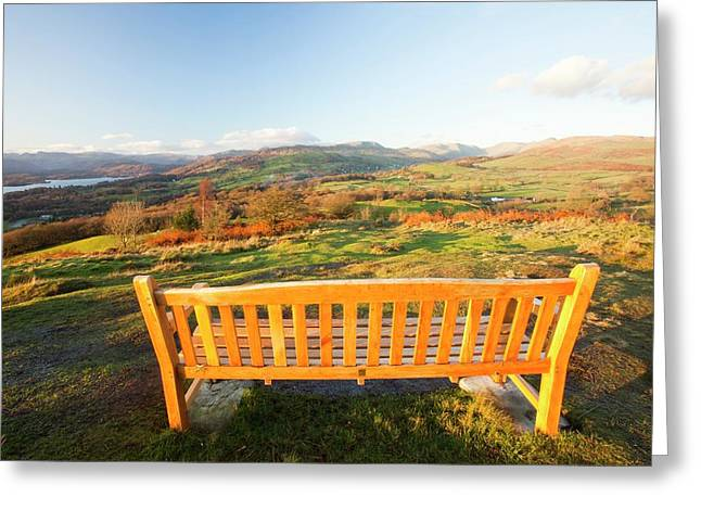 Memorial Seat On Orrest Head Greeting Card by Ashley Cooper