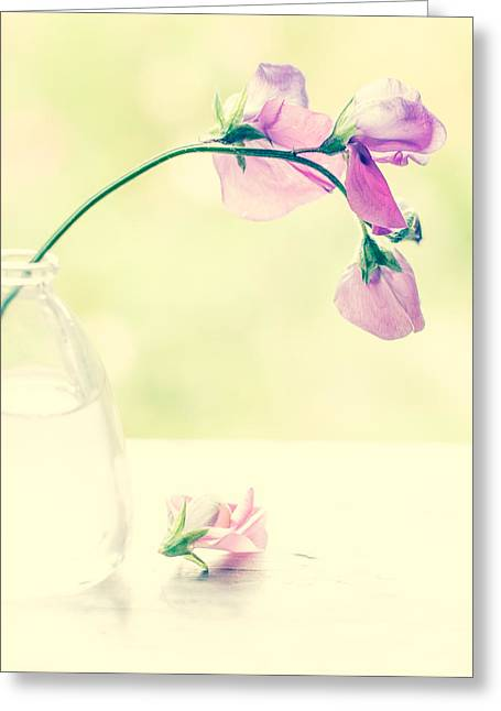Glass Vase Photographs Greeting Cards - Memories Left Behind Greeting Card by Constance Fein Harding