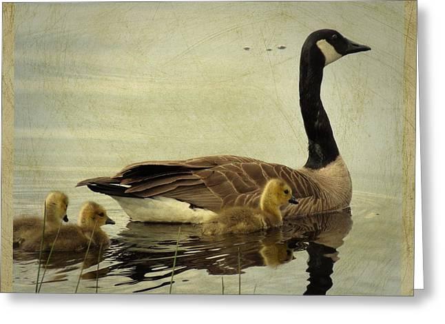 Mother Goose Greeting Cards - Memories of Motherhood Greeting Card by iina  Van Lawick