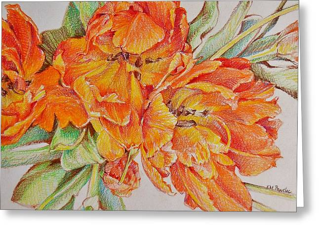 Spring Bulbs Drawings Greeting Cards - Memories of Spring Greeting Card by K M Pawelec