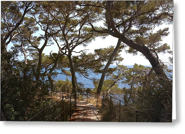 Portofino Italy Greeting Cards - Memory lane.. Greeting Card by A Rey