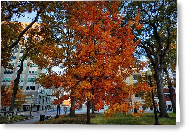 Memphis Tn Greeting Cards - Memphis Fall in Court Square 002 Greeting Card by Lance Vaughn