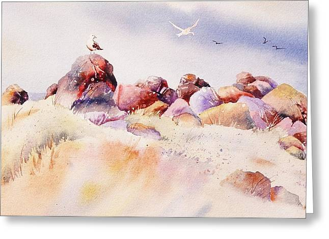 And Sand-mix Greeting Cards - Mendocino Birds Greeting Card by John  Svenson