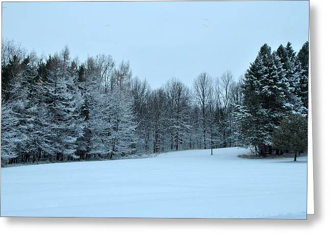 Mendon Greeting Cards - Mendon Ponds Park - Winter in the Park Greeting Card by Wayne Sheeler