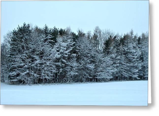 Mendon Greeting Cards - Mendon Ponds Park - Winter Greeting Card by Wayne Sheeler