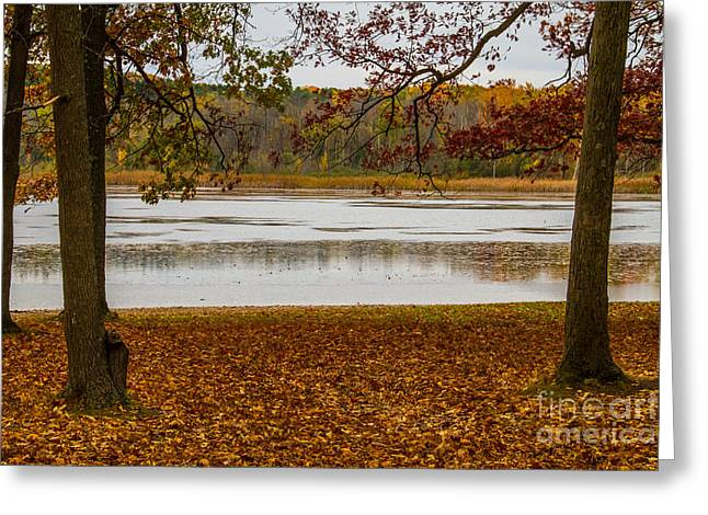 Mendon Greeting Cards - Mendon Ponds Greeting Card by William Norton