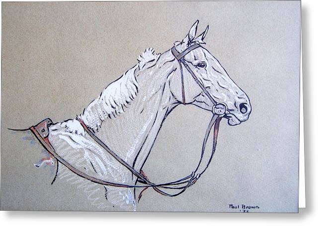 Recently Sold -  - Race Horse Greeting Cards - Menelaus Greeting Card by Paul Brown