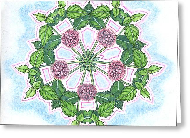 Mentha Greeting Card by Antony Galbraith