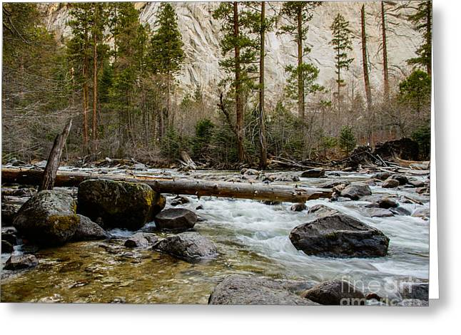 Terry Garvin Greeting Cards - Merced River from Happy Isles 2 Greeting Card by Terry Garvin