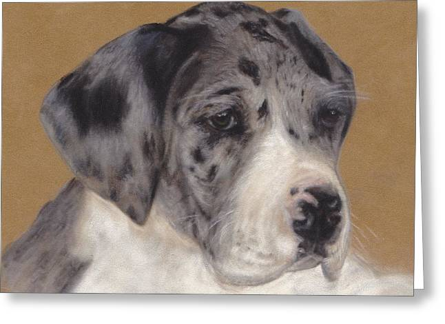 Puppies Pastels Greeting Cards - Merle Great Dane Puppy Greeting Card by Loreen Pantaleone