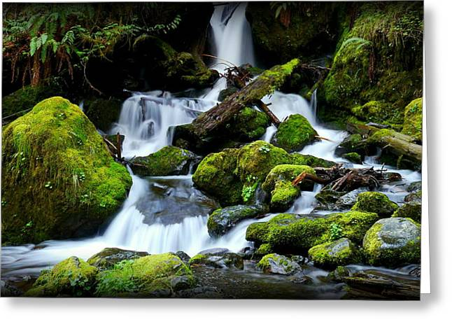 Christopher Fridley Greeting Cards - Merriman Falls Greeting Card by Christopher Fridley