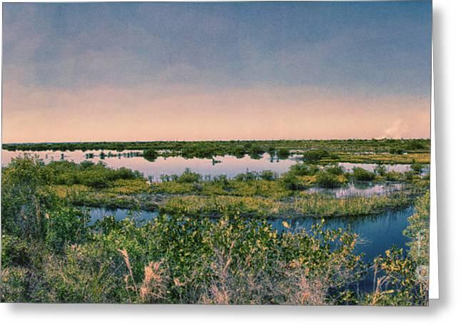 Merrit Greeting Cards - Merritt Island National Wildlife Refuge Panorama Greeting Card by Anne Rodkin