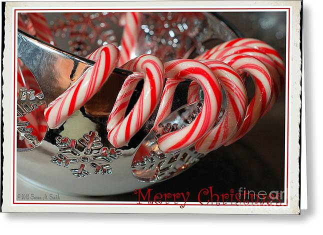Susan M. Smith Greeting Cards - Merry Christmas Candy Canes Greeting Card by Susan Smith