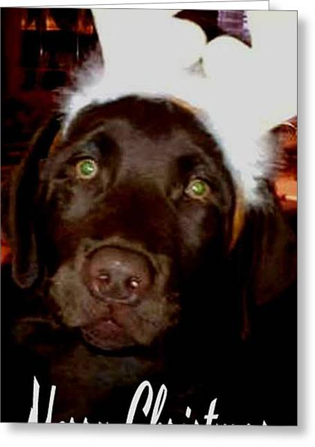 Chocolate Lab Greeting Cards - Merry Christmas Chocolate Labrador Greeting Card by Gail Matthews