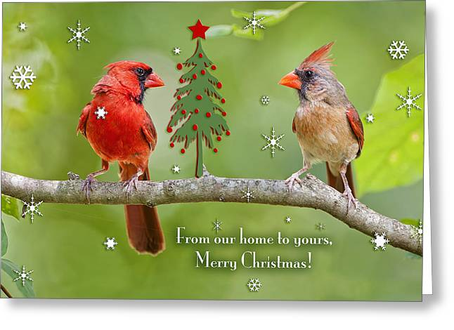 Christmas Greeting Photographs Greeting Cards - Merry Christmas from our home to yours Greeting Card by Bonnie Barry