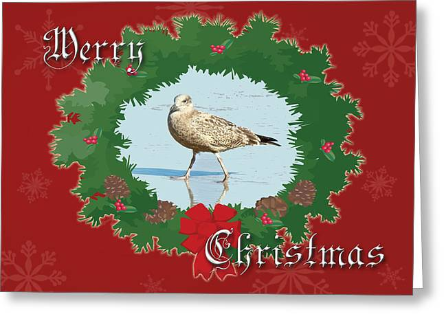 Mother Nature Greeting Cards - Merry Christmas Greeting Card - Young Seagull Greeting Card by Mother Nature