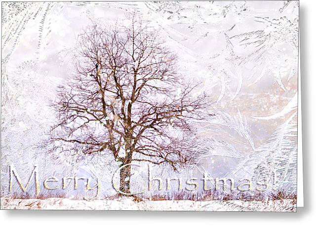 Merry Christmas Greeting Card by Jenny Rainbow