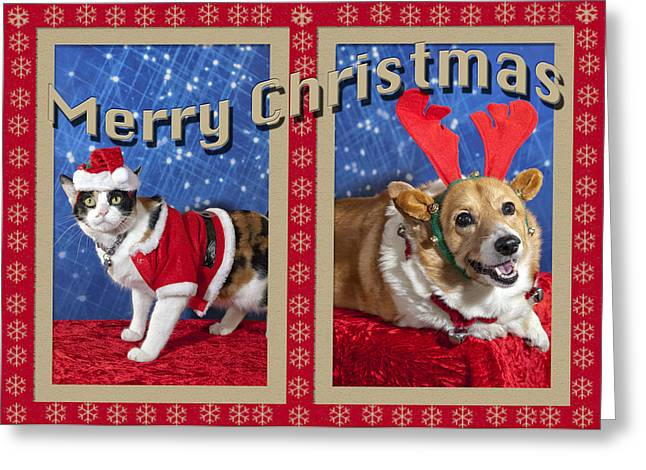 Cool Attitude Greeting Cards - Merry Christmas Greeting Card by Melany Sarafis