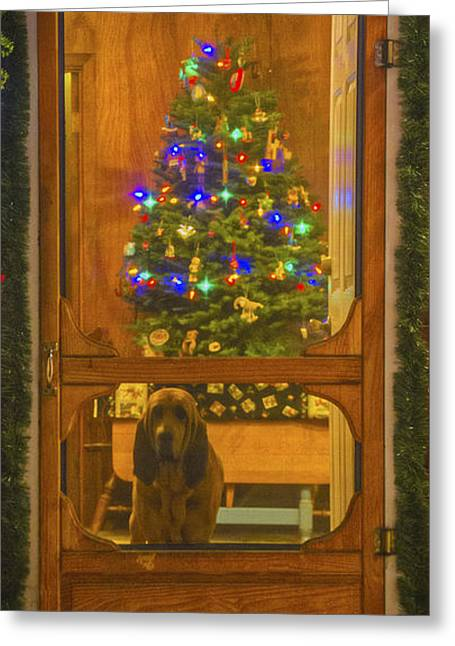 Screen Doors Greeting Cards - Merry Christmas Greeting Card by Mitch Shindelbower