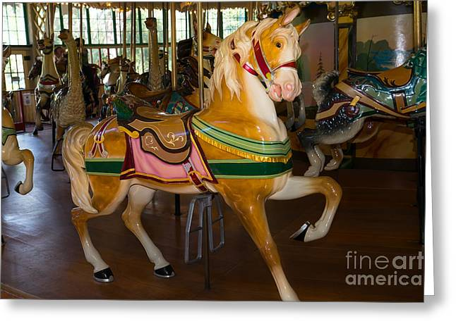 The Tiger Greeting Cards - Merry Go Around DSC2948 Greeting Card by Wingsdomain Art and Photography