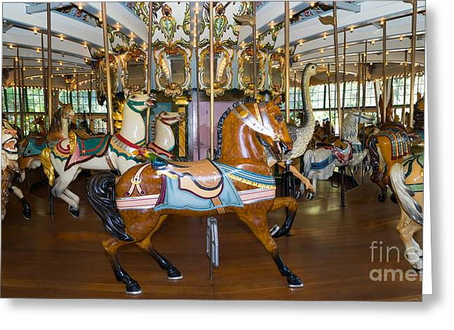 The Tiger Greeting Cards - Merry Go Around DSC2963 Greeting Card by Wingsdomain Art and Photography