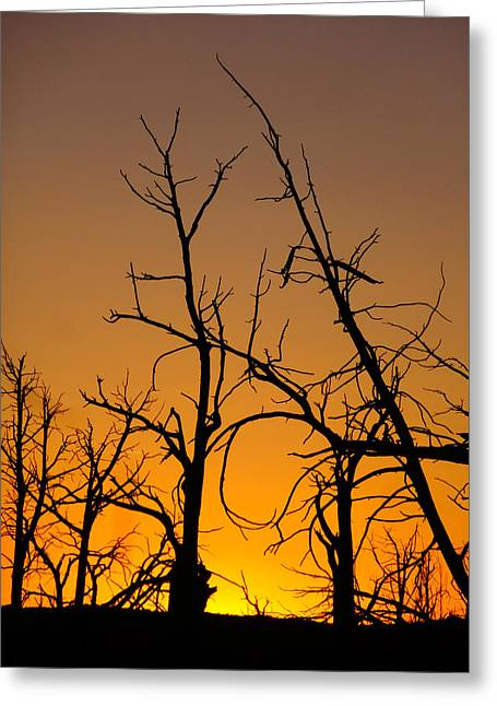 Colorado Wildfires Greeting Cards - Mesa Verde Sunset Greeting Card by Dan Sproul