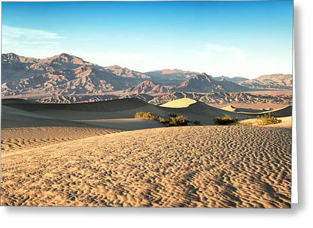 Sand Patterns Greeting Cards - Mesquite dunes pano Greeting Card by Jane Rix