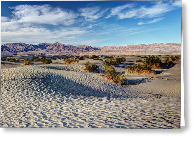 Sand Patterns Greeting Cards - Mesquite Flat Dunes Greeting Card by Heidi Smith