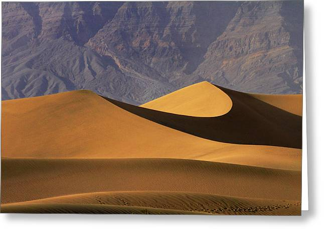 Mesquite Flat Sand Dunes And Grapevine Greeting Card by David Wall