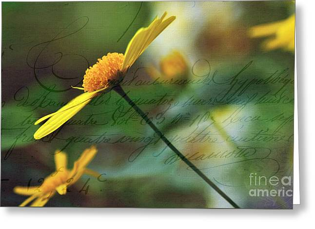 Message In A Daisy Greeting Card by Kaye Menner