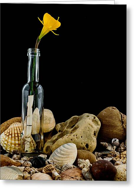 Fine Bottle Greeting Cards - Message of Love II Greeting Card by Marco Oliveira