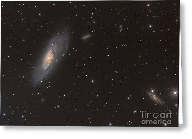 M106 Greeting Cards - Messier 106 Spiral Galaxy Greeting Card by Reinhold Wittich