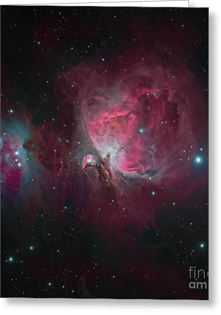 Colorful Cloud Formations Greeting Cards - Messier 42, The Orion Nebula Greeting Card by Michael Miller