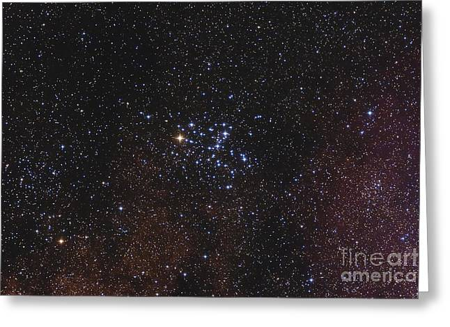 Twinkle Greeting Cards - Messier 6, The Butterfly Cluster Greeting Card by Alan Dyer