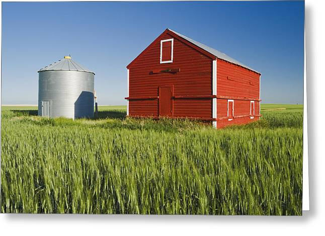 Grain Bin Greeting Cards - Metal Grain Bin And Wooden Grain Bin In Greeting Card by Dave Reede