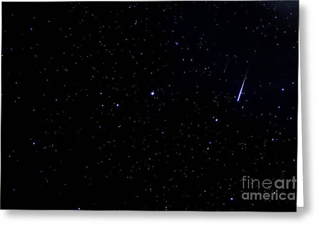 April Showers Greeting Cards - Meteors Lyrid Meteor Shower Greeting Card by Thomas R Fletcher