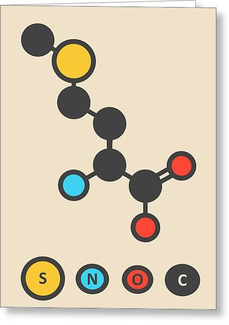 Methionine Amino Acid Molecule Greeting Card by Molekuul