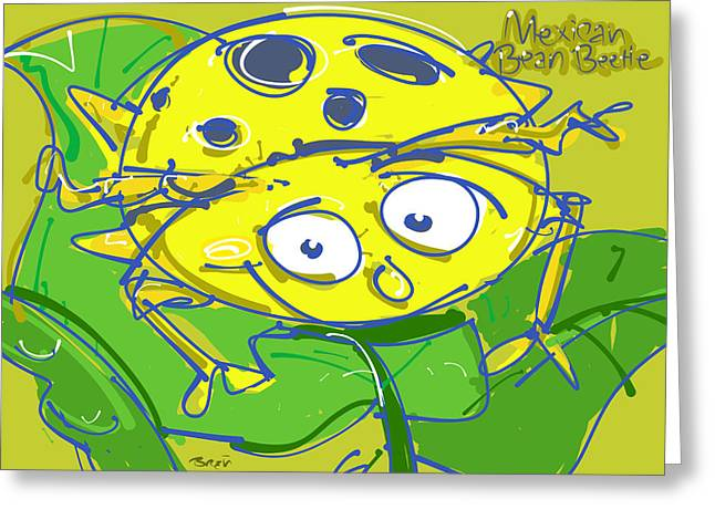 Green Beans Drawings Greeting Cards - Mexican Bean Beetle Greeting Card by Brett LaGue