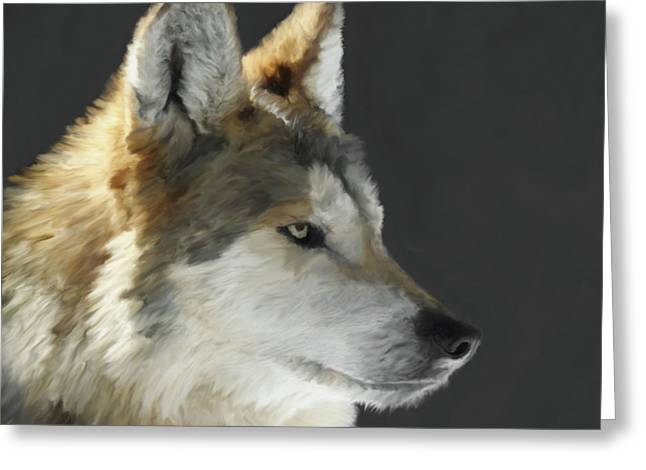 Wolf Portrait Greeting Cards - Mexican Grey Wolf Portrait Freehand Greeting Card by Ernie Echols