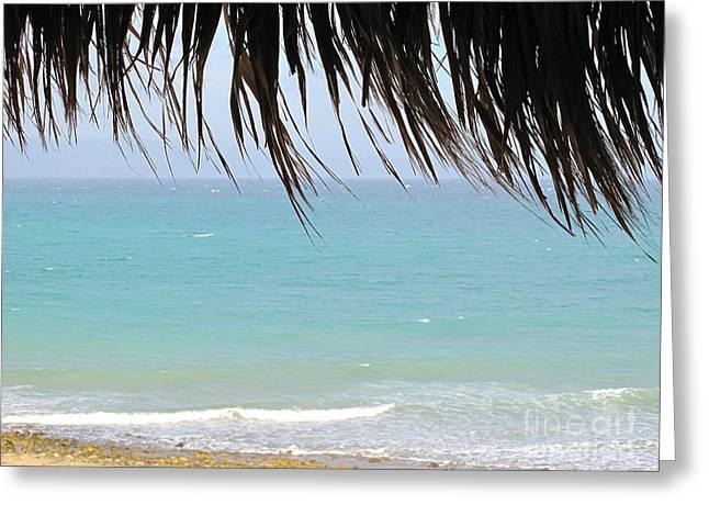 Mexico Beach Greeting Card by Virginia Ann Hemingson