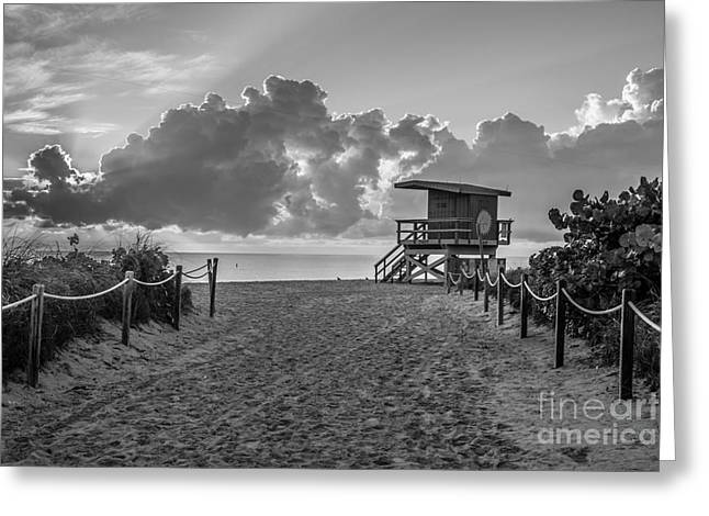 Sun Break Greeting Cards - Miami Beach Entrance Sunrise - Black and White Greeting Card by Ian Monk