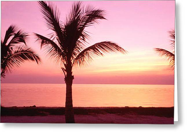 Colorful Photography Greeting Cards - Miami Beach, Florida, Usa Greeting Card by Panoramic Images