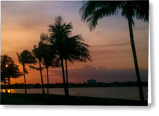 Recently Sold -  - A Summer Evening Landscape Greeting Cards - Miami Sunset Greeting Card by Charlie Cliques