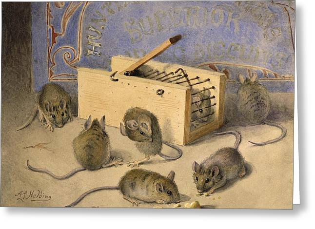 Mouse Greeting Cards - Mice and Huntley Palmers Superior Biscuits Greeting Card by Agnes Louise Holding