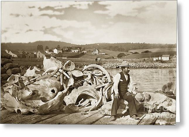 Bone Pile Greeting Cards - Michael Noon sitting on a  Pile of whale bones Monterey Wharf  circa 1896 Greeting Card by California Views Mr Pat Hathaway Archives