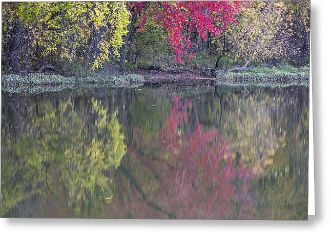 Reflections In River Greeting Cards - Michigan Autumn River and Reflection  Greeting Card by John McGraw