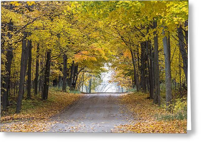 Pure Michigan Greeting Cards - Michigan Autumn Road Greeting Card by John McGraw